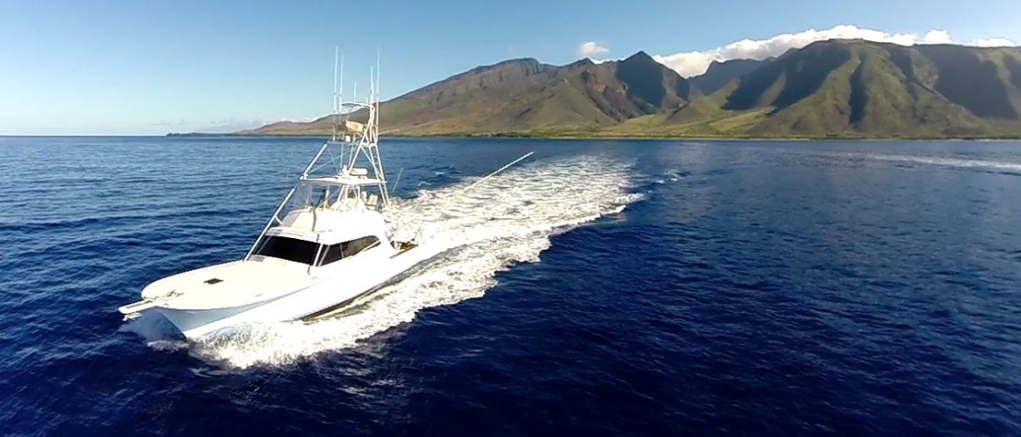 Request a sports fishing charter on maui excellence for Maui fishing charter